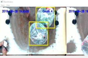 Portfolio for Case Detection in Multi-Camera Stream