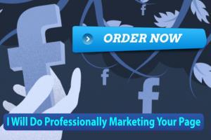 Portfolio for I Will Do Professionally Marketing Your