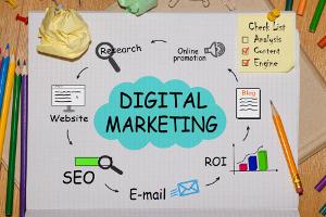 Portfolio for SEO & Digital Marketing Expert