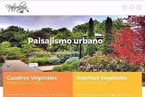 Portfolio for Wordpress, theme, plugin installation