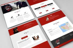 Portfolio for HTML to WordPress conversions