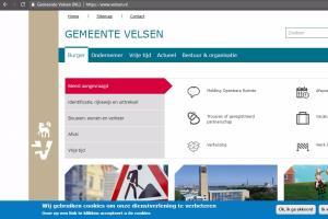Portfolio for Web Accessibility Expert/WCAG/S508/ADA