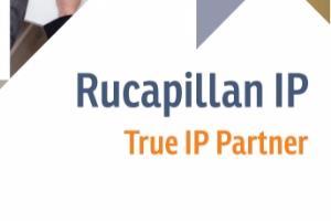 Portfolio for Patent professional expert