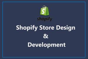 Portfolio for Shopify | E-commerce | Dropshipping
