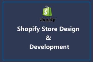 Portfolio for Shopify   E-commerce   Dropshipping