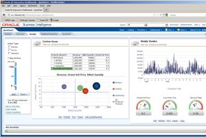 Portfolio for Senior BI Developer, Technical write