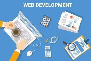 Portfolio for Web Application Designing/Development