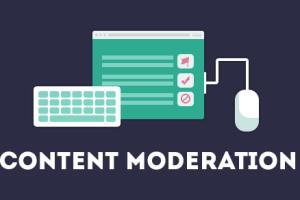 Portfolio for Content Moderator