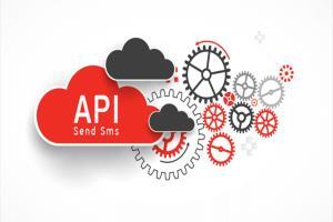 Portfolio for I can do any kind of API integration