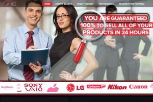 Portfolio for AIG Company