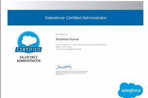 Portfolio for Certified SFDC Admin/ BA