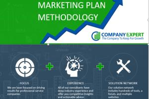 Portfolio for Sales, Marketing and Business Strategies