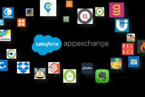 Portfolio for Salesforce Developer