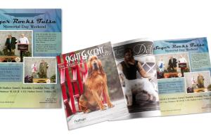 Portfolio for Print, Layout and Page Design