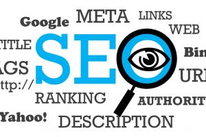 Portfolio for SEO & SMM Expert