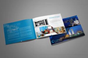 Portfolio for Amazing  Brochure Design