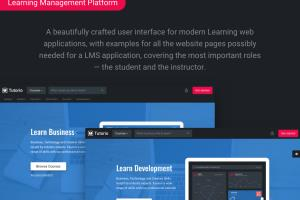 Portfolio for Learning Management System (LMS)