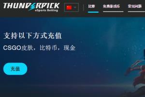 Portfolio for Chinese proofreading