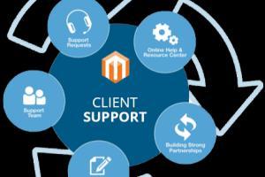 Portfolio for Customer support