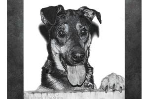 Portfolio for Character/ Pet Portrait Artist