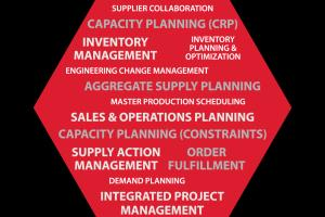 Portfolio for Sales & Operations Planning in Mfg.