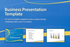Portfolio for PPT Design