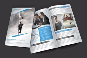 Portfolio for Brochure Designing