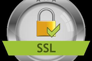 Portfolio for Get True Business ID SSL Certificate.