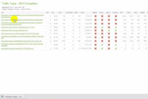Portfolio for Analysis the competitor and rank first