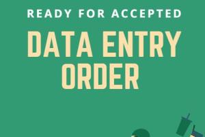 Portfolio for Data Entry Pdf conversion within 24 hrs