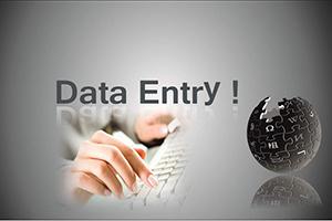 Portfolio for Hello, I am Expert in Data Entry