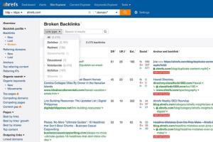 Portfolio for Keyword Ranking and Backlinks
