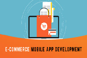 Portfolio for Mobile Application Developement
