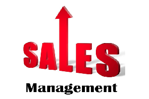 Portfolio for Sales, Lead and Payroll processing CRM