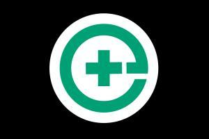 Portfolio for Pharma IT Developer
