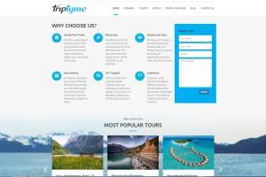 Portfolio for Website and Web Application Development