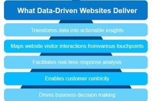 Portfolio for Database Driven Websites