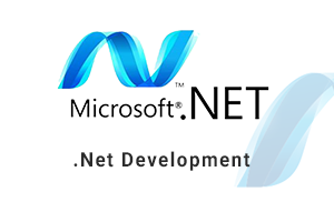 Portfolio for dot net development