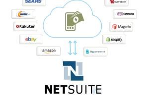 Portfolio for NetSuite Integration