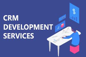 Portfolio for ERP Customization & Implementation