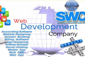 Portfolio for Professional website Development