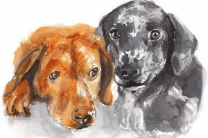 Portfolio for Watercolor Portraits