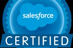 Portfolio for Salesforce Consultant