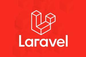 Portfolio for Laravel Website Development.