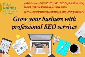 Portfolio for Digital Marketing Services: SEO, PPC, So