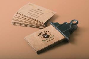 Portfolio for Logo | Packaging | Branding
