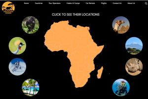 African Safari Booking