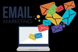 Portfolio for Email Marketing & SEO Service