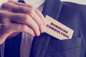 Portfolio for Business management Consultant