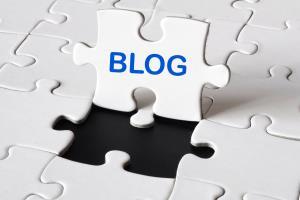 Portfolio for Blog Writing Services